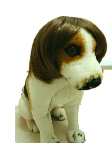 Amazon.com   Tanya Amazing Gentleman Style Pet Wig Dog Wig 1pc Brown ... b8b81b039