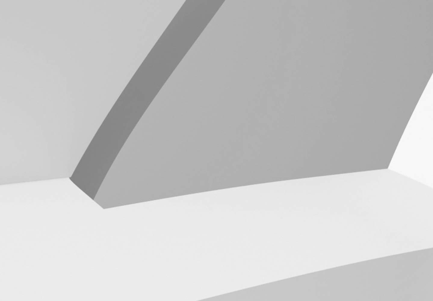 Murando - Fototapete Blaumen Lilien 350x256 cm - Vlies Tapete Tapete Tapete - Moderne Wanddeko - Design Tapete - Wandtapete - Wand Dekoration - Blaume Abstrakt weiß 3D Optisch Illusion b-C-0158-a-a B071D9ZPGF Wandtattoos & Wandbilder 82bf1c
