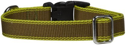 Waggo Stripe Hype Collar - Olive - Large - 19-26 x 1 inches