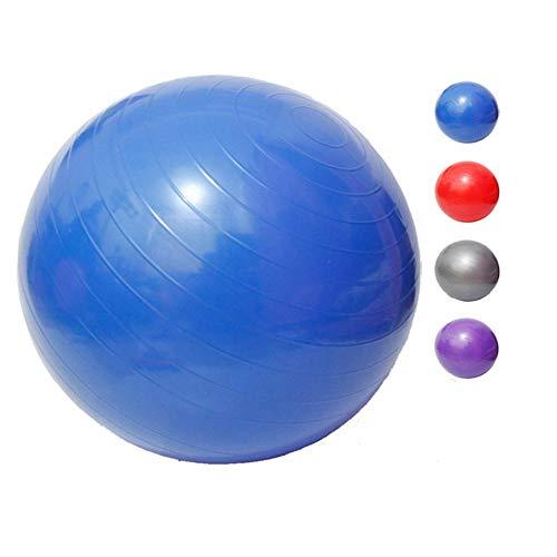 LYYN Ballon de Gym Sports Yoga Balls Pilates Fitness Gym Balance Fit Ball Exercice Pilates Workout Massage Ball