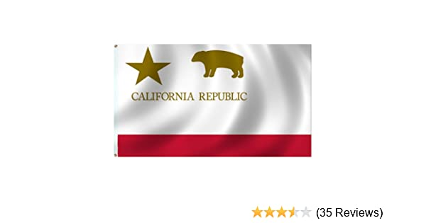 PURPLE /& GOLD CALIFORNIA State Usa American Flag 3x5 Polyester Republic Golden B