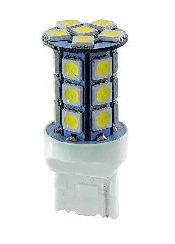 RMS LED T20 280 lúmenes blanca (bombillas LED)/LED Lamp T20 280 lúmenes