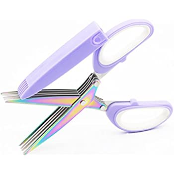 Herb Scissors Stainless Steel Multipurpose Shear with 5 Blades and Cover with Cleaning Comb, Sushi Shredded Scallion Spices Cooking Tools,Gift Idea(RainBow)