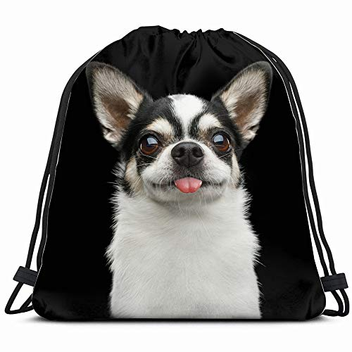 Funny Portrait Smiling Chihuahua Dog Looking Animals Wildlife Drawstring Backpack Sports Gym Bag For Women Men Children Large Size With Zipper And Water Bottle Mesh Pockets