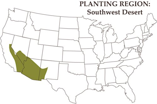 Nature's Seed 1 Acre Southwest Desert Goat Pasture Blend by Nature's Seed (Image #2)