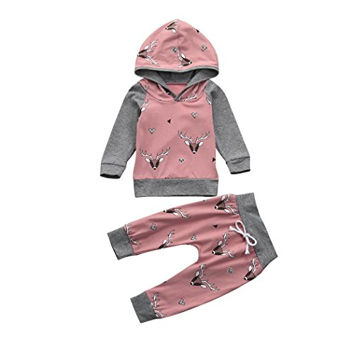 Hatoys 2PCS Toddler Kids Baby Boys Girls Deer Print Hoodie Tops+Pants Outfits with Long Sleeve Outfit Sets (12M(Height:75-80CM), Pink)