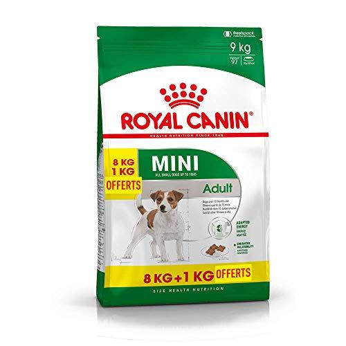 Royal Canin Comida Para Perros Mini Adult 8 1 Kg Gratis 1 Unidad 1 X 9 Kg