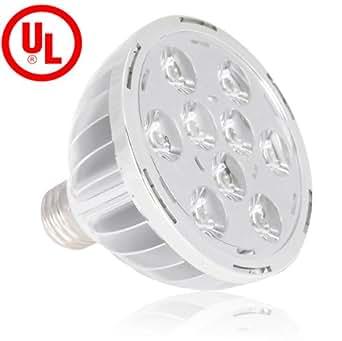 Amazon.com: Lighting EVER E26 9 Watt PAR30 LED Bulbs, UL Approved