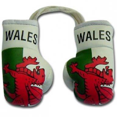 罪悪感賛美歌花に水をやるWales Flag Mini Boxing Gloves