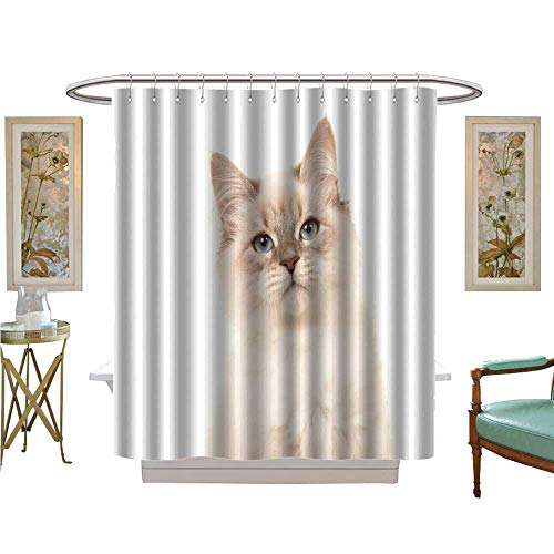 - luvoluxhome Shower Curtains Waterproof Portrait Birman Kitten cat with Blue Eyes on a White Background Satin Fabric Sets Bathroom W48 x L84