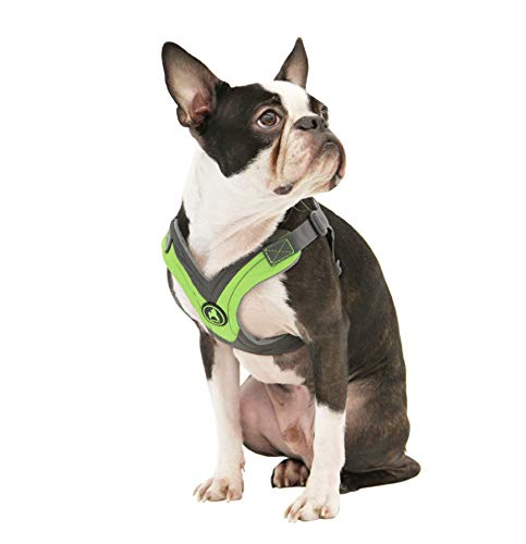 Gooby - Trekking Harness, Small Dog Fleece Lined Harness with Memory Foam Padding, Green, X-Small