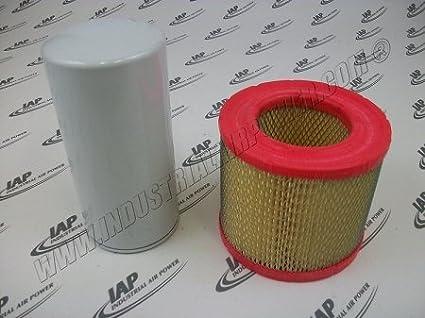 2901 - 0000 - 00 - Kit de filtro diseñado para uso con Atlas Copco compresores de aire: Amazon.es: Amazon.es