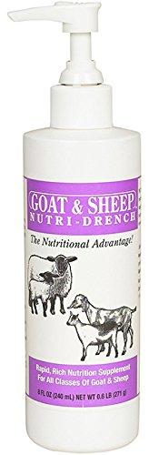 Bovidr Laboratories 2740008 Nutri Drench-Sheep Goat