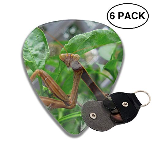 Animal Praying Mantis Guitar Picks Various Rock Bands Collection 0.46mm 0.71mm And 0.96mm, ()