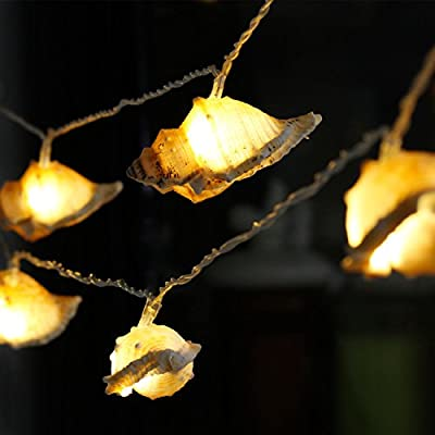 Fashion String Lights for Summer 10feet 3A