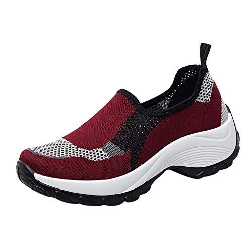 HENWERD Mesh Jazz Shoes Womens Modern Split-Sole Dance Sneakers for Ballroom Breathable (Wine,7.5 US)