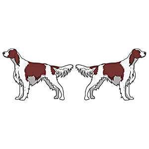 SignMission Irish Red and White Setter Decal | Indoor/Outdoor | Dog Lover Super Cute Sticker for SUV Windows, Dorm Rooms, Bedroom, Offices Personalized Gift | 2 Pack of 6 26