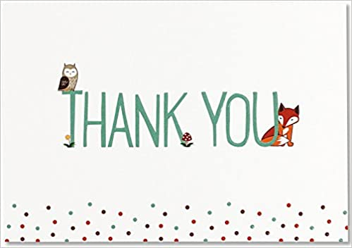 woodland friends thank you notes stationery note cards boxed cards peter pauper press 9781441322326 amazoncom books
