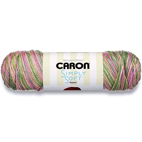 Caron Simply Soft Paints Yarn Rose Garden
