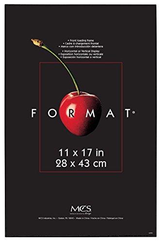 MCS Plastic Format Frame for a 11