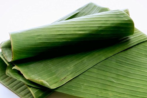 Fresh Banana Leaves 2 Lbs. Hoja de Platano