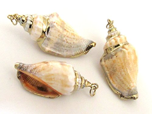 - 1 Pendant - Gold plated brown spiral conch shell pendant - SP039