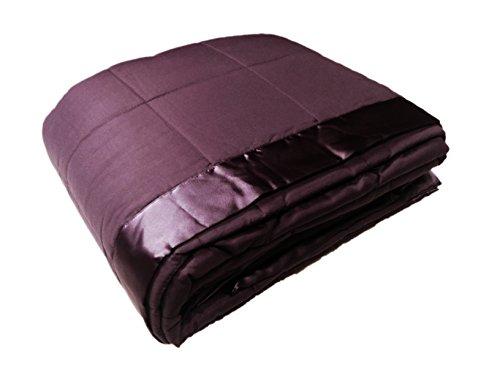 Cozy Fleece Down Alternative Blanket with Satin Trim, Full/Queen, (Violet Trim)