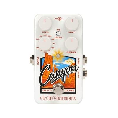 electro-harmonix-canyon-delay-and