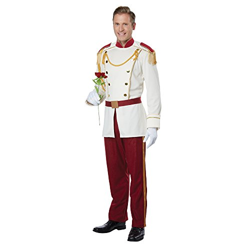 Mens Royal Storybook Prince Disney Costume size (Disney Princes Costumes)