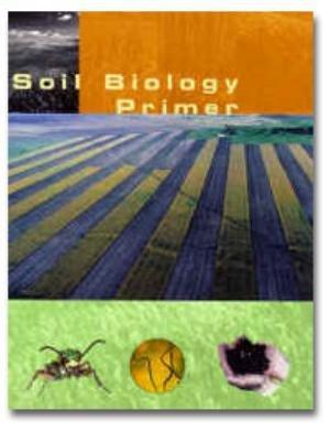 soil-biology-primer