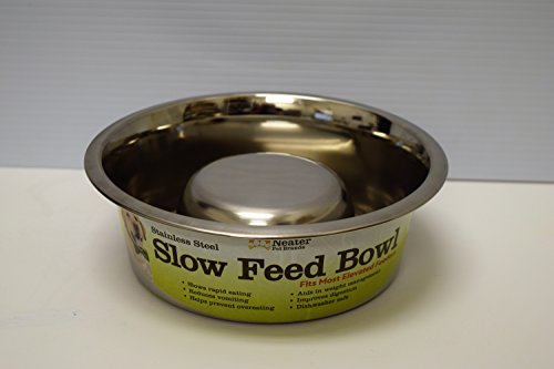 Slow Feed Bowl Neater Brands product image