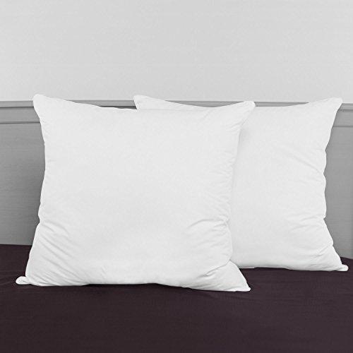 SwissLux Decorator 28x28-inch Euro Square Pillows (Set of 2) (Decorator Set)