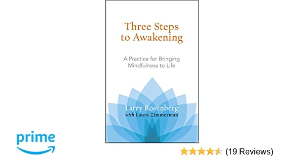 Amazon three steps to awakening a practice for bringing amazon three steps to awakening a practice for bringing mindfulness to life 9781590305164 larry rosenberg laura zimmerman books fandeluxe Choice Image