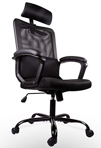 Smugdesk Ergonomic Office Chair High Back Mesh Office Chair Adjustable Headrest Computer Desk Chair for Lumbar Support (Chairs Desks For Computer)