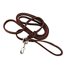 Daditong 3m Long Leather Braided Pet Dog Brown Training Leash Lead