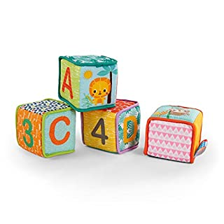 Bright Starts Grab & Stack Blocks is a playtime classic! These 4 soft blocks have 3D features like crinkle fabrics, satin tags, rattles, jingles and knots, to keep baby busy building and exploring. Sewn-in loops are perfect for attaching them for...