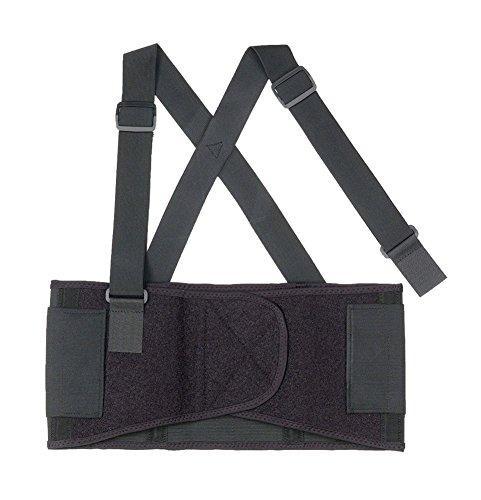ProFlex 1650 Economy Elastic Back Support Belt, Large, Black Alimed Brace