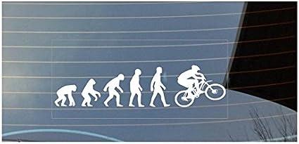 Adhesivo para ventanilla de coche, diseño de evolución del hombre a ciclista, color blanco: Amazon.es: Coche y moto