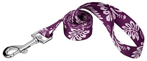 Country Brook Petz | 1/2 Inch Purple Hawaiian Dog Leash - 4 Foot