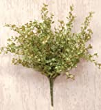 Pepper Grass Bunch Bush Light Green Country Primitive Floral Décor