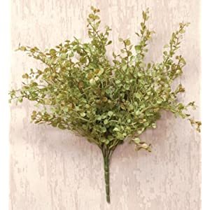 Pepper Grass Bunch Bush Light Green Country Primitive Floral Décor 69
