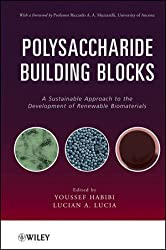 Polysaccharide Building Blocks: A Sustainable Approach to the Development of Renewable Biomaterials