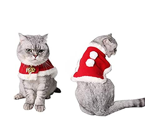 ZMMAPET Peluca, Cabeza de León, Perro, Gato, Sombrero, Cabello de Oro, Samoa Cuello, Curioso Tocado y Peinado,Navidad,L: Amazon.es: Productos para mascotas