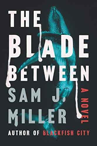 Book Cover: The Blade Between: A Novel
