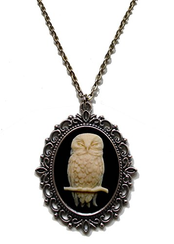 Victorian Vault Owl Cameo Steampunk Gothic Pendant Necklace on Chain (Goth Cheshire Cat Costume)