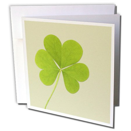 3dRose Green Clover- Irish Art- St. Patricks Day - Greeting Cards, 6 x 6 inches, set of 12 (Patricks Day Invitations)