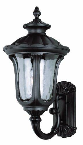 Trans Globe Lighting 5912 BK Outdoor Knolls 22.75
