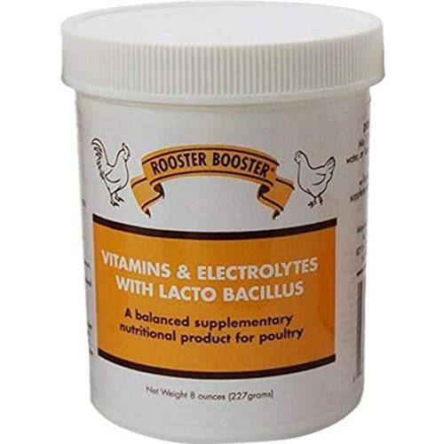 Rooster Booster Vitamins and Electrolytes with Lactobacillus by Rooster Booster