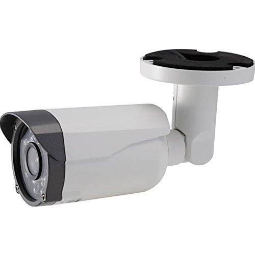 NSK:ハイビジョン屋外カメラ NS-F201C NSK NS-F201C B01HG8XM3A