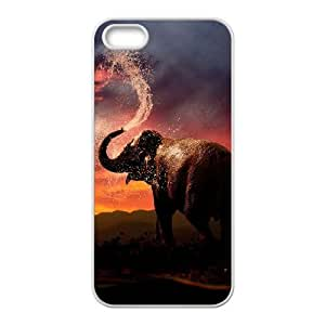 Bathing Elephant Personalized Cover Case with Hard Shell Protection for Iphone 5,5S Case lxa#844984